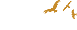 Syrahmi-logo-devicex2